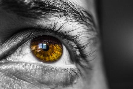 perception and focus